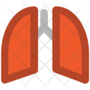 Lungs Anatomy Breathe Icon