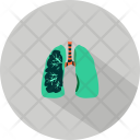 Lungs Medical Tool Icon