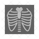 Lungs Scan Report Icon