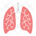 Lungs Human Organ Icon