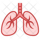 Lungs Body Part Icon