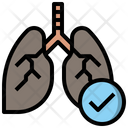 Healthcare And Medical Anatomy Lungs Icon