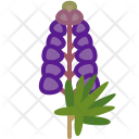 Lupine Plant Food Icon