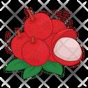 Lychee Fruit Fresh Icon