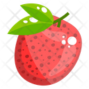 Lychee Fruit Healthy Food Healthy Diet Icon