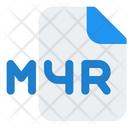 M 4 R File Icon
