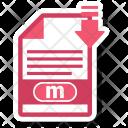 M File Format Icon