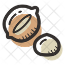 Macadamia Nut Nut Healthy Icon