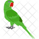 Macaw Icon