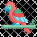 Parrot Zoo Bird Animal Fly Macaw Pet Icon