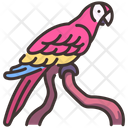 Macaws Macaw Parrot Icon