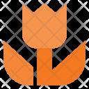 Macro Mode Image Icon