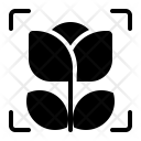 Macro Detail Capture Icon