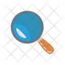 Magnifier Glass Money Icon