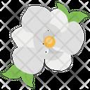 Magnolia Blossom Floral Icon