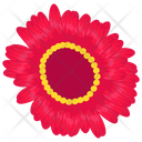 Magnolia Generic Flower Seasonal Blossom Icon