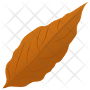 Magnolia Leaf Icon