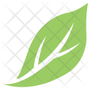 Magnolia Plant Tree Icon