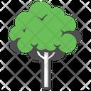 Mahogany Icon