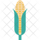 Maize Icon
