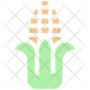 Maize Sweet Corn Corn Icon