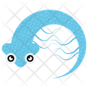Isopoda Cartoon Malacostraca Sea Animal Icon
