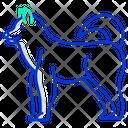 Malamute Dog Breeds Dog Species Icon