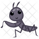 Male Ant Icon