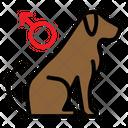 Male Dog Icon