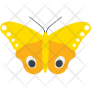 Moth Male Io Fly Icon