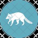 Mammal Wildlife Animal Eulipotyphla Icon