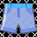 Gshorts Shorts Beach Icon