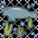 Manatee Sea Animal Animal Icon