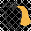 Mango Fruit Healthy Icon