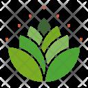 Mango Leaves Hindu Icon