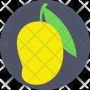 Mango Fruit Stone Icon