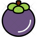 Mangosteen Fruit Healthy Icon