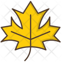 Maple Leaf Nature Icon