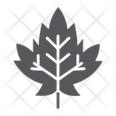 Maple Leaf Foliage Icon