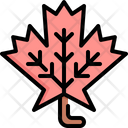 Maple Leaf Thanksgiving Icon
