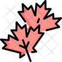 Maple Autumn Leaves Icon