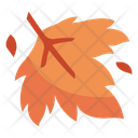 Maple Season Autumn Icon
