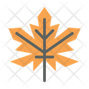 Maple Leaf Fall Icon