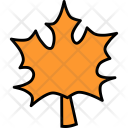 Maple Leaf Leaves Icon