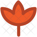 Maple Leaf Autumn Icon