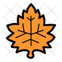 Maple Nature Leaf Icon