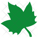 Maple Sign Label Icon