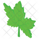Maple Leaf Leaf Tree Leaf Icon