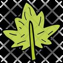 Falling Leaf Oak Tree Leaf Autumn Icon