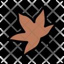 Leaf Leaves Autumn Icon